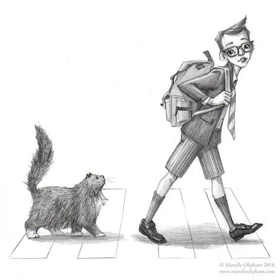 A New Cat Friend